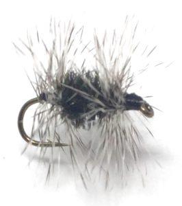 midge fly gray ugly